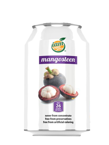Zumo Natural de Mangostan 330 ml