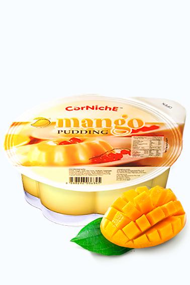 Big Happy Pudding de Mango