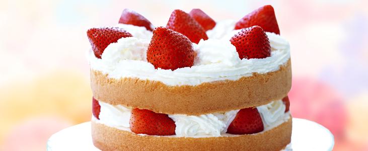 Short Cake (Shōtokēki)